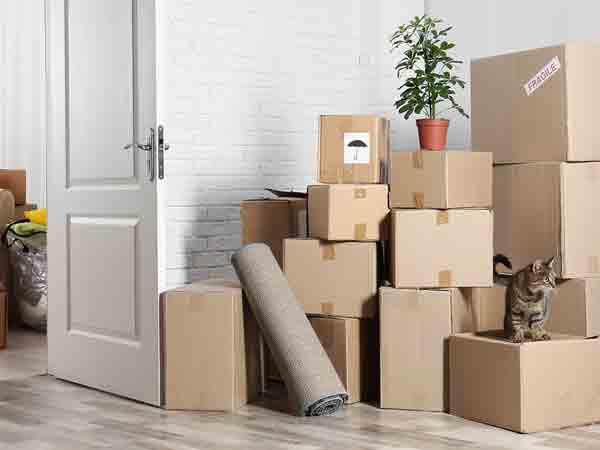 Servizio-trasloco-appartamento-correggio